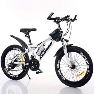 XHLJ Children's Bicycle, Variable Speed Mountain Bike, Internal Sticker Damperer-Paint Brake