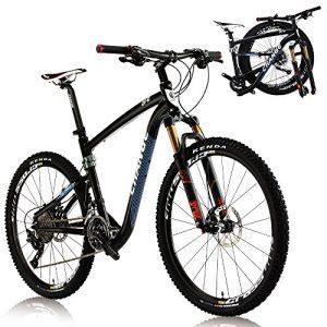 Change 26 Inch Lightwegiht Full size Mountain Folding Bike Shimano XT 2×11 speeds DF-602BF