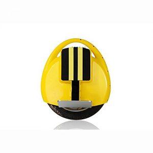 Lei HuanLeBao 14″Self Balancing Electric Unicycle Balance Wheel (Black?White?Red?Yellow?Blue) , yellow , 14