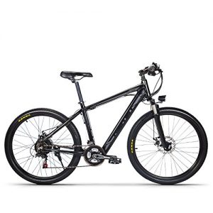 RICH BIT® Mountain Electric Bike TP-800 250W*36V LG Battery Concealed in Frame 7 Gears 26inch Wheel Disc Brake Grey