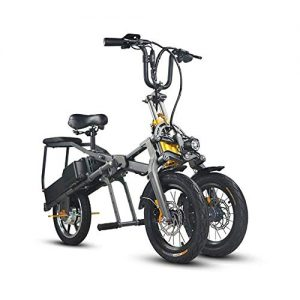 DYHQQ Three Wheel Folding Electric scooter,Three wheel folding electric bike with 2 LG battery