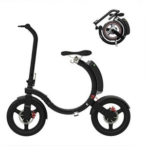 GOUTUIZI Folding Electric Bicycle,250W 5.2Ah Lithium Battery Electric Bike Removable Lithium Battery Charging,for Adult(Black)