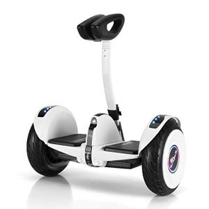 HWZQHJY Self Balancing Electric Scooter with Leg Control,dual Motor Intelligent Drive and 17km/h Free Speed Limit