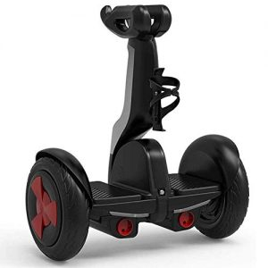HWZQHJY Electric Balance Car,for Kids And Adult Gifts, Graffiti,Best Gift for 3 Age+ Kids
